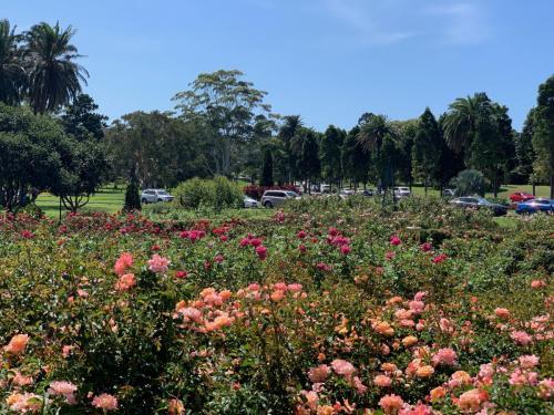 Centennial Park2