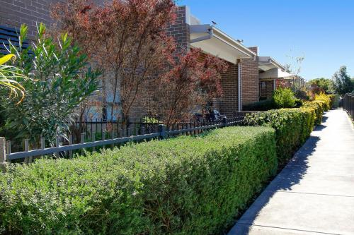 Wentworth-Housing-Fragar-Rd-Hedge